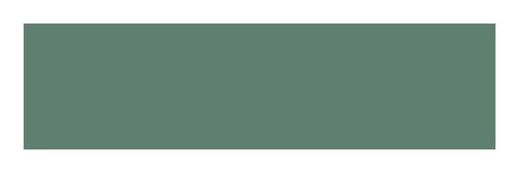 MIP_logo_R_rgb-5555